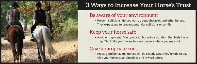 3 ways to gain horses trust