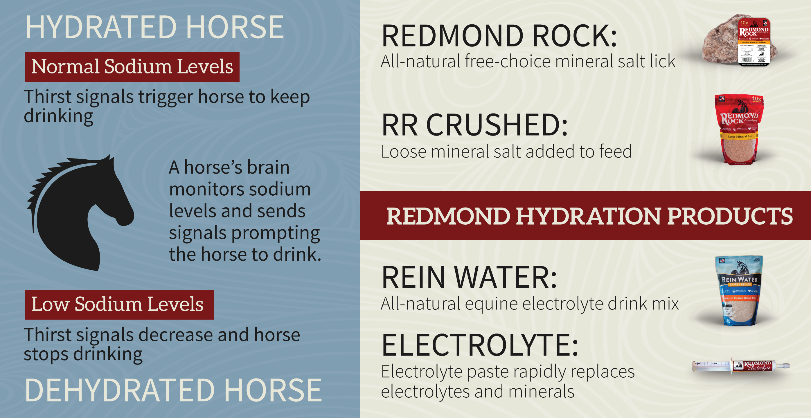 Hydration products-2