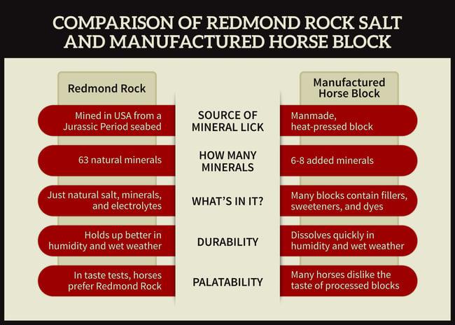 Salt Rock vs. Mineral Block