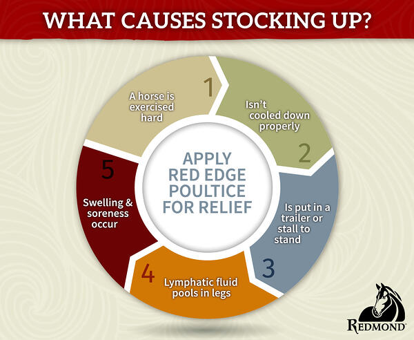 WHat Causes Stocking Up-1