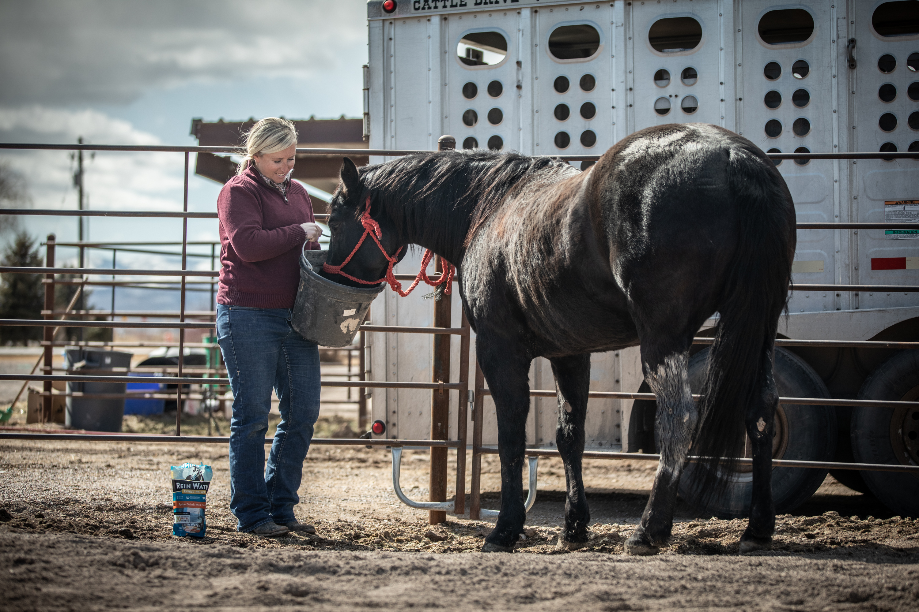 A Redmond Story: How Alyssa Got Two New Horses to Drink More Water