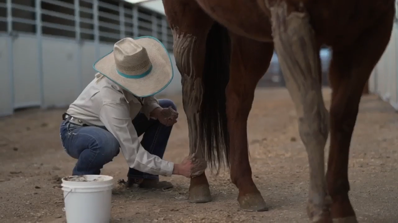 A Redmond Story:This Clay Poultice Gave Jennifer's Horses an Edge