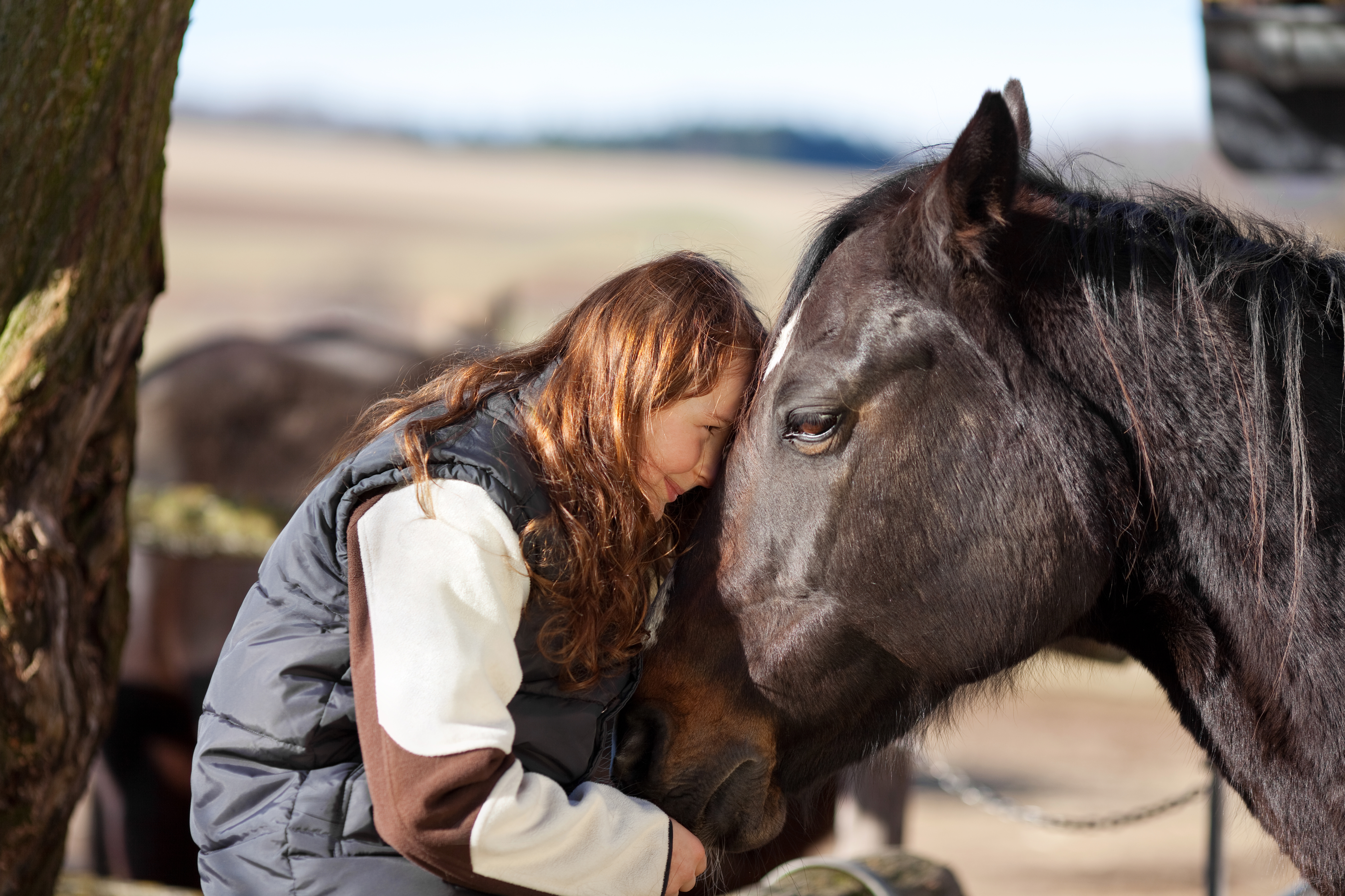 A Redmond Story: The Remedy for My Horse's Gas Colic and Equine Ulcers