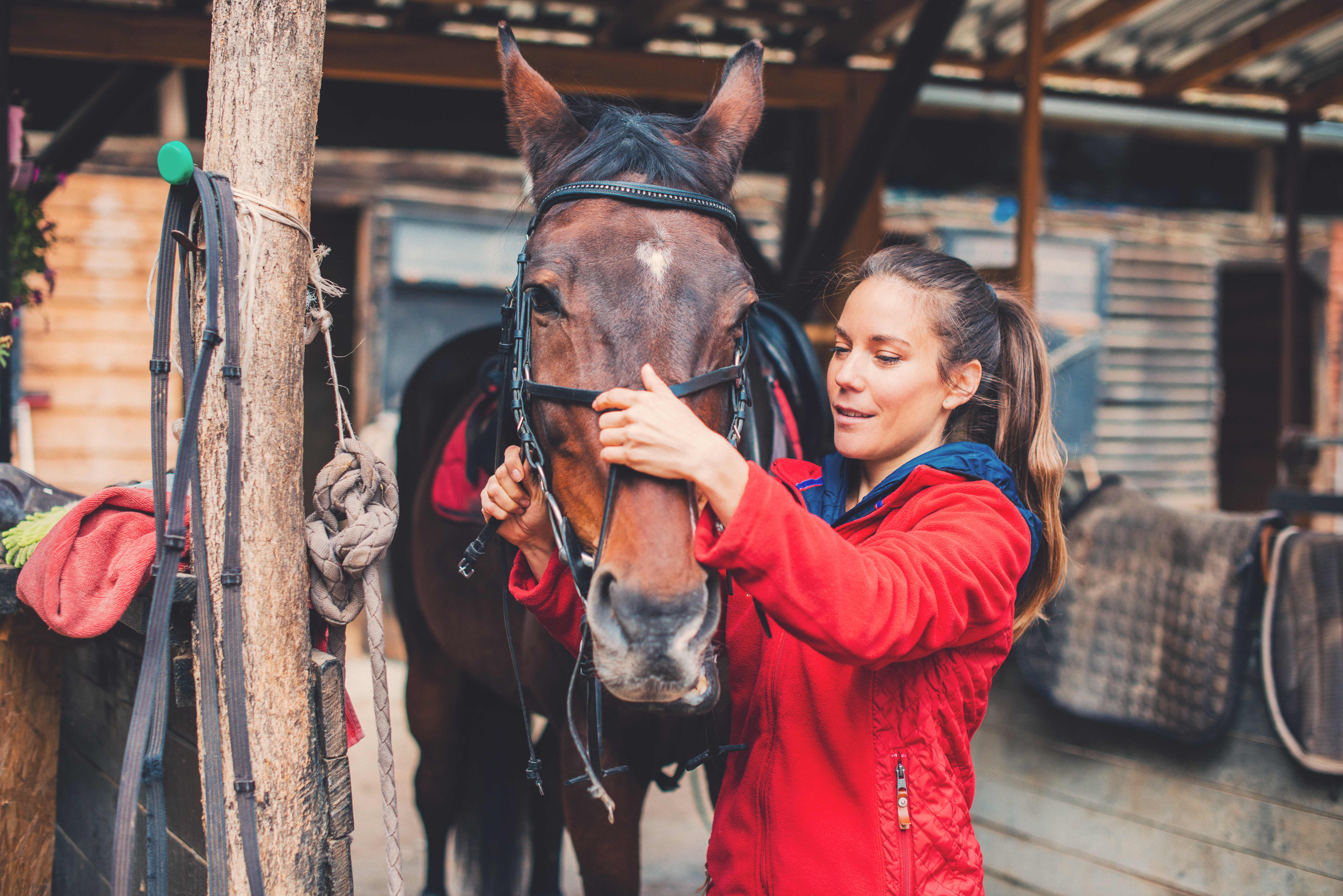 12 Ways to Prepare for Spring and Keep Your Horse Healthy
