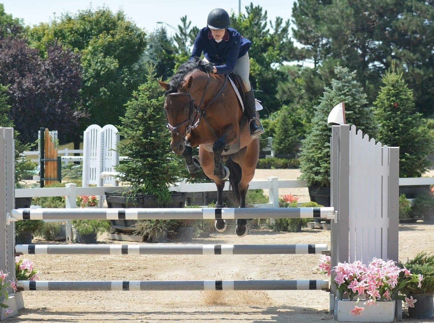A Redmond Story: Rebecca's Show Horses Were Showing Signs of Ulcers
